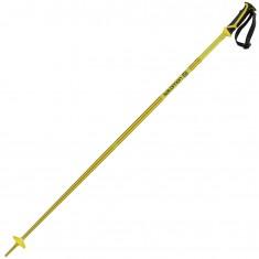 Salomon Arctic pole, yellow